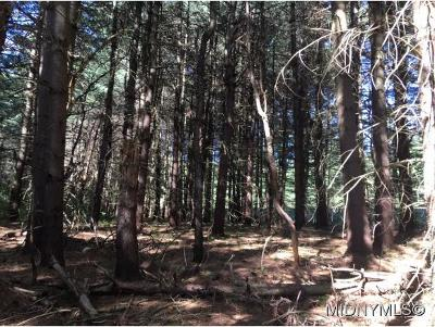 Forestport Residential Lots & Land For Sale: Dustin Road