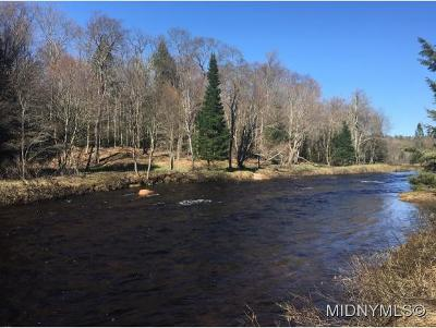 Remsen Residential Lots & Land For Sale: 11133 Roberts Road