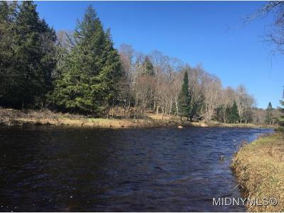 Remsen Residential Lots & Land For Sale: 11047 Roberts Road