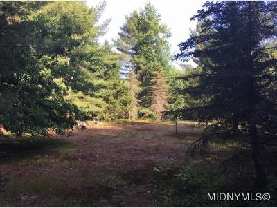 Forestport Residential Lots & Land For Sale: 3040 Bower Road