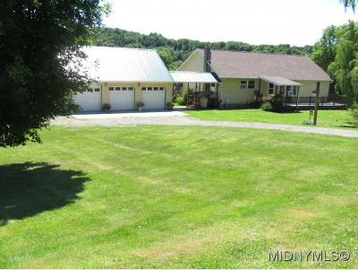 Herkimer, Ilion, Little Falls, Mohawk, Schuyler Single Family Home For Sale: 4020 State Route 28