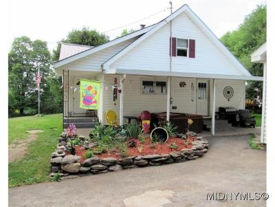Herkimer County Single Family Home For Sale: 1228 Elizabethtown Road