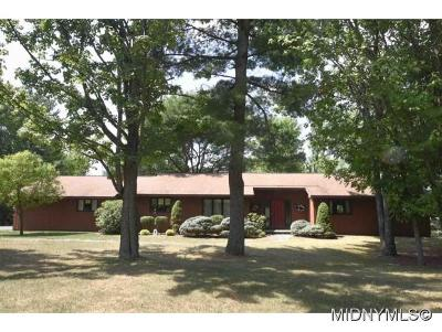 Oneida County Single Family Home For Sale: 9 White Pine Road