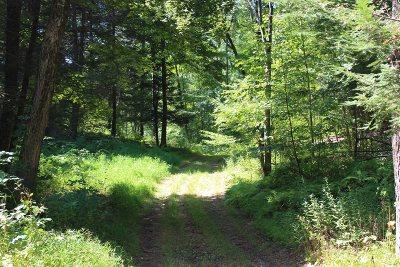 La Grange Residential Lots & Land For Sale: 62 Pond Gut