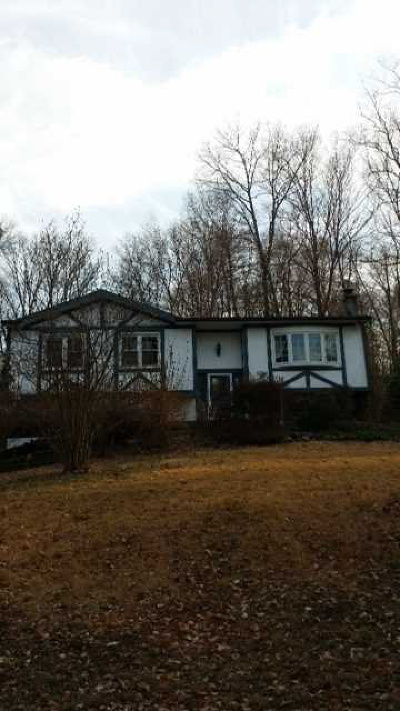 Single Family Home For Sale: 1065 Route 292