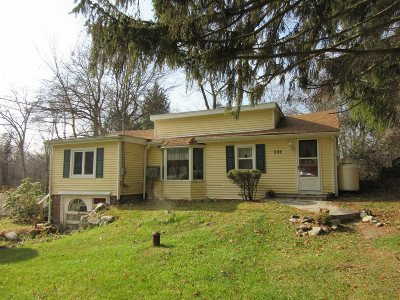 Pawling Single Family Home For Sale: 663 Route 292