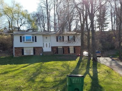 Wappinger Single Family Home For Sale: 66 Main St