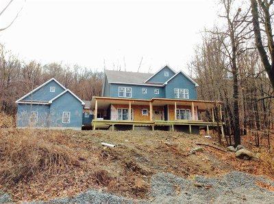 East Fishkill Single Family Home For Sale: 84 Fishkill Hook Rd