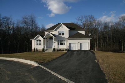 Fishkill Single Family Home For Sale: 15 Knoll Ct