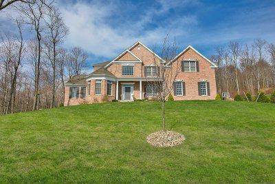 La Grange Single Family Home For Sale: 169 Ridgeline Dr