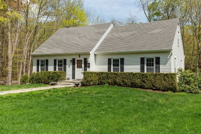 Hyde Park Single Family Home For Sale: 12 Hudson Drive