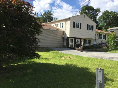 Fishkill Single Family Home For Sale: 82 Longview