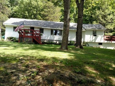 Pawling Single Family Home For Sale: 56 Sanita Road