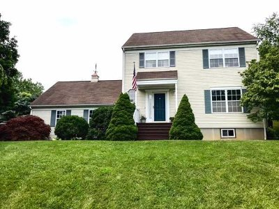 Pawling Single Family Home For Sale: 10 Tory Ln