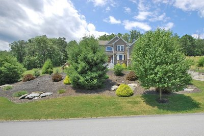 East Fishkill Single Family Home For Sale: 219 Country Club Rd