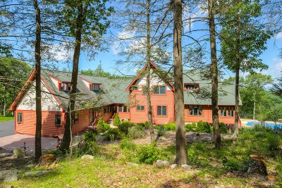 East Fishkill Single Family Home For Sale: 38 Long Hill