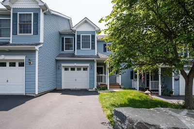 Hyde Park Condo/Townhouse For Sale: 268 Pinebrook Dr