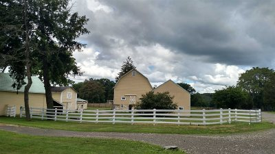 Dutchess County Single Family Home For Sale: 84 Titusville Road