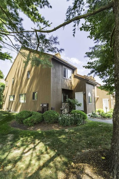 Poughkeepsie Twp Condo/Townhouse For Sale: 121 Swan Ct