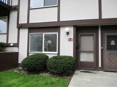Fishkill Condo/Townhouse For Sale: 11 Millholland