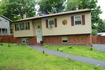 Fishkill Single Family Home New: 15 Willow Rd
