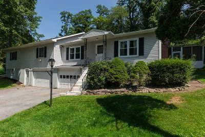 East Fishkill Single Family Home For Sale: 131 Stormville Rd