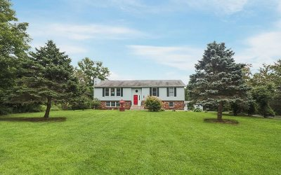 Wappinger Single Family Home For Sale: 87 Robinson Ln