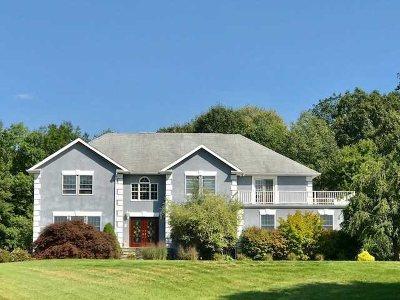 East Fishkill Single Family Home For Sale: 17 Legere