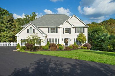 East Fishkill Single Family Home New: 66 Rodeo Dr