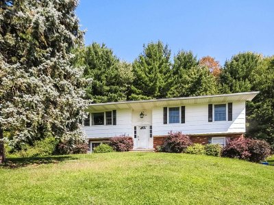 Wappinger Single Family Home For Sale: 25 Martin Dr
