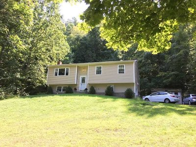 Fishkill Single Family Home For Sale: 122 Greenwood Dr