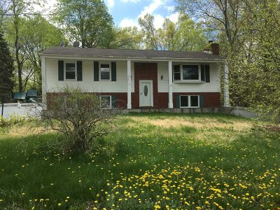 Wappinger Single Family Home For Sale: 51 Martin Dr