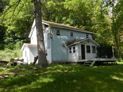 Amenia Single Family Home For Sale: 3975 Route 22