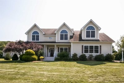 East Fishkill Single Family Home For Sale: 42 Guinness Way
