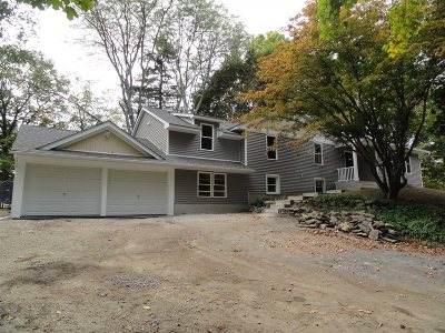 Dutchess County Single Family Home For Sale: 294 Lime Ridge Rd