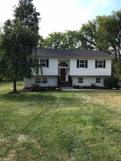 Fishkill Single Family Home For Sale: 275 Baxtertown Rd