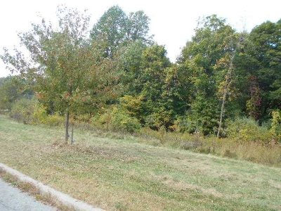 Fishkill Residential Lots & Land For Sale: Blossom Ct