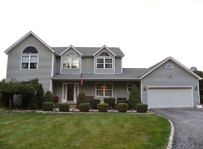 East Fishkill Single Family Home For Sale: 229 Stormville Mountain Rd