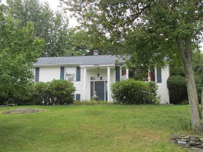 Wappinger Single Family Home For Sale: 22 Split Tree Dr