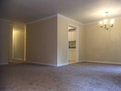 Dutchess County Rental New: Cherry Hill Drive #1806