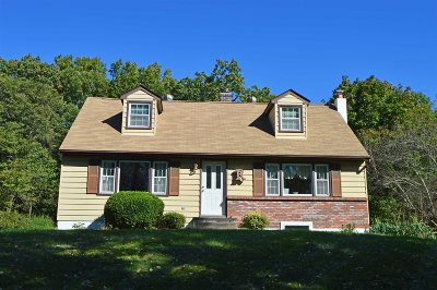 East Fishkill Single Family Home For Sale: 113 Vicki Lane