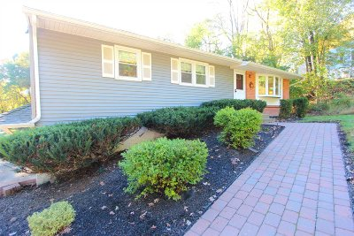 East Fishkill Single Family Home For Sale: 58 Ninham Ave