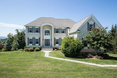 East Fishkill Single Family Home For Sale: 47 Spy Glass Hl