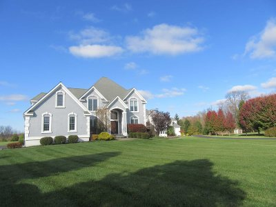 East Fishkill Single Family Home For Sale: 40 Winter Green Pl