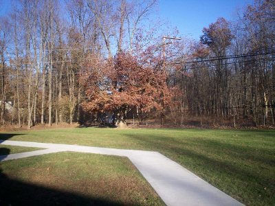 Wappinger Condo/Townhouse For Sale: 1668 Route 9 #10H