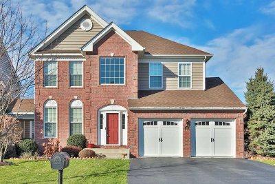 Fishkill Single Family Home For Sale: 199 Stony Brook