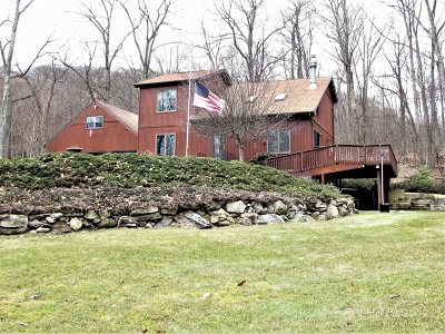 Pawling Single Family Home For Sale: 3485 Route 55