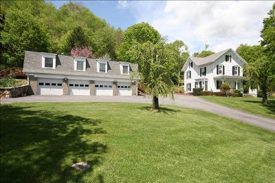 Pawling Single Family Home For Sale: 403 Cushman Road