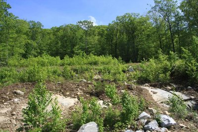Residential Lots & Land Continue Showing: Emma Way - Lot 3