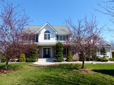 Red Hook Single Family Home For Sale: 245 Route 199